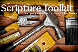 scripturetoolkit